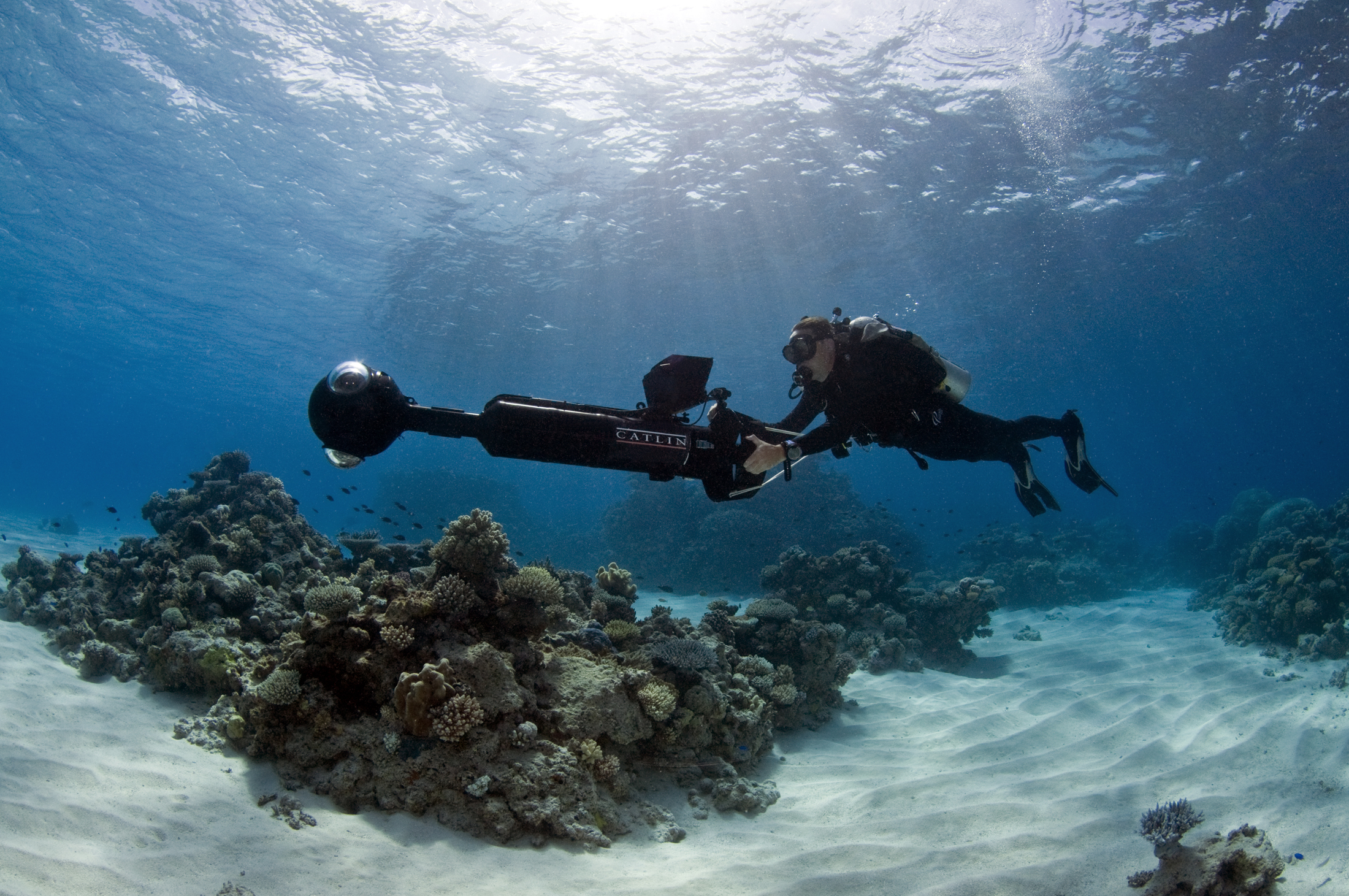Explore The World's Reefs Virtually Through Google Street View
