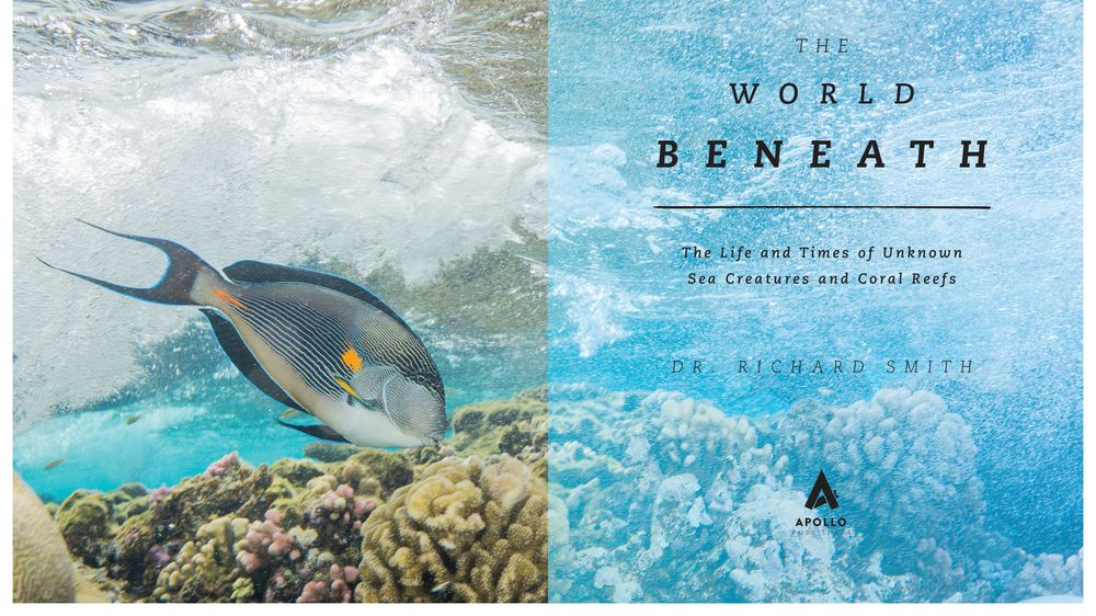 world beneath marine biology book
