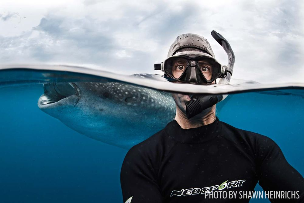 Ways Scuba Divers Have Fun Sport Diver - 23 amazing things divers discovered bottom ocean