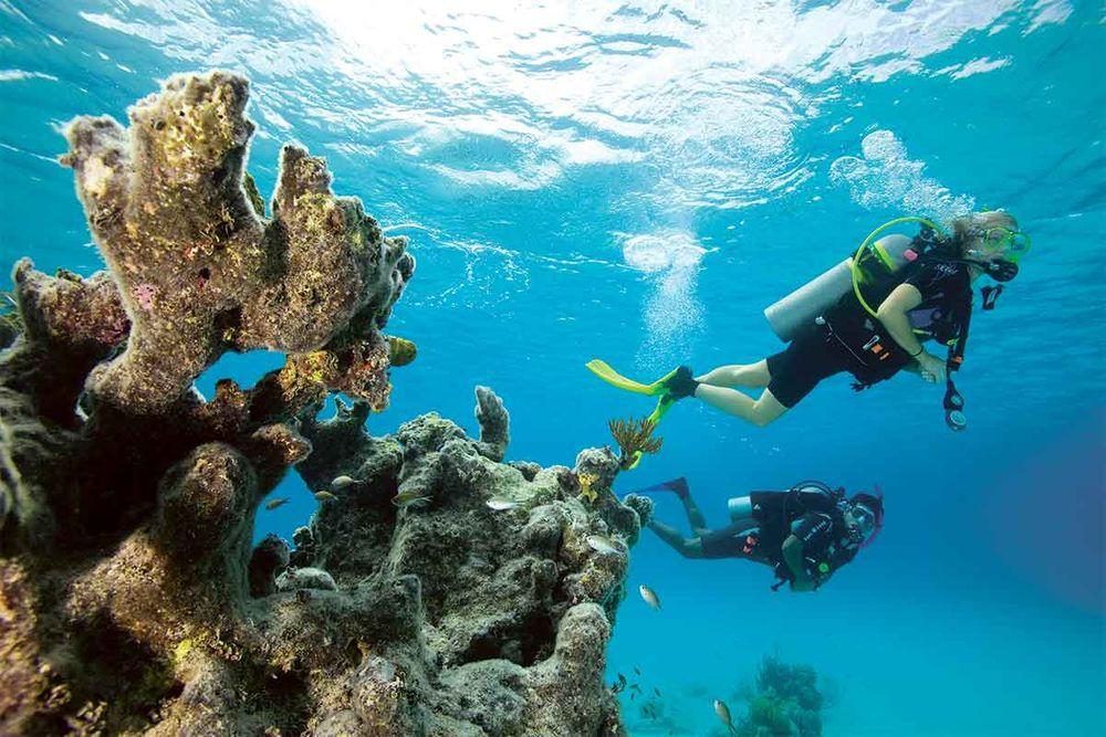 Padi Enriched Air Diver Nitrox Course Sport Diver