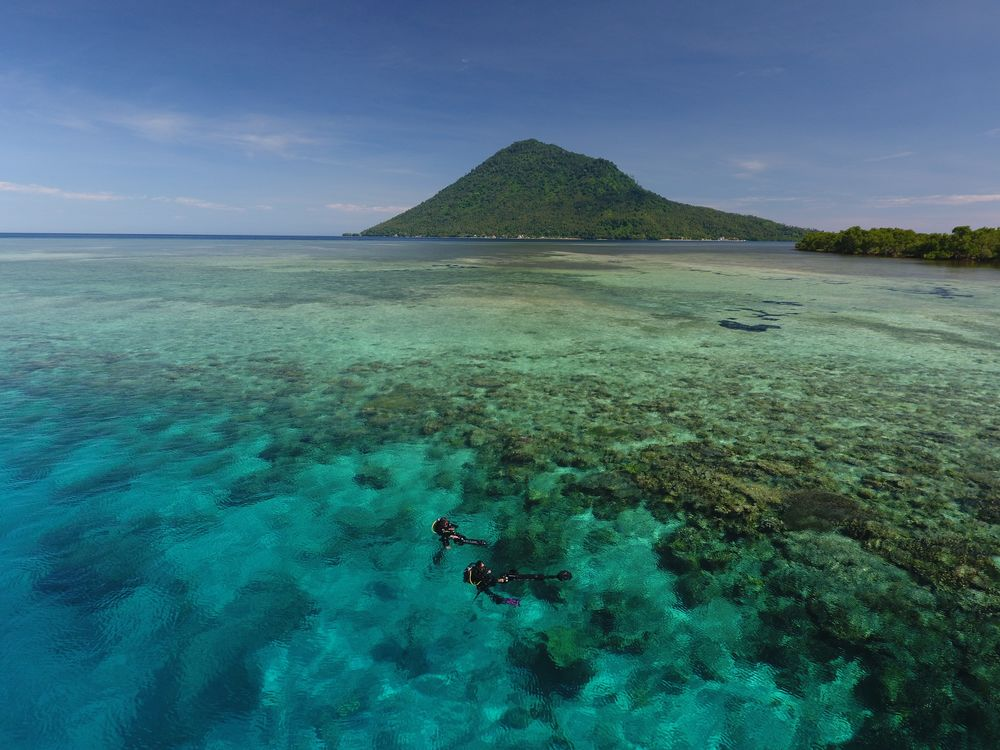 Two scientists survey a healthy reef in Manado. Image: The Ocean Agency/ Paul G. Allen Philanthropies