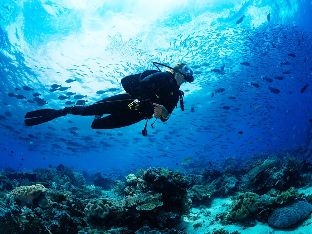 6 things to practice underwater to become a better scuba diver