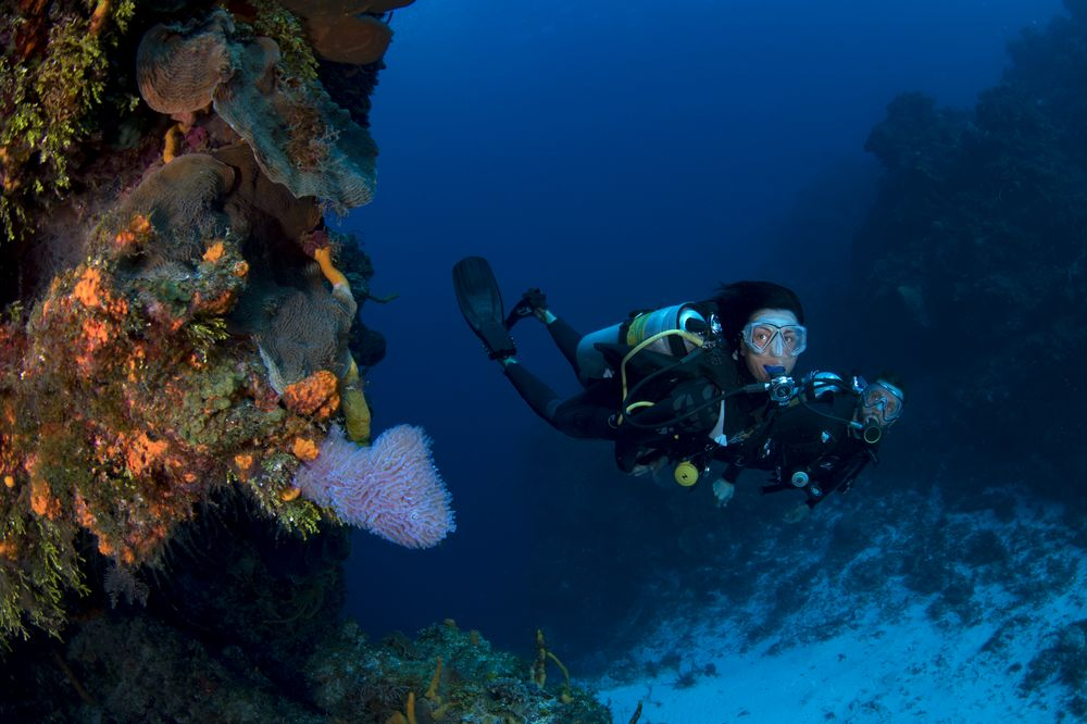 Why Your Next All-Inclusive Vacation Should Be to Cozumel | Sport Diver