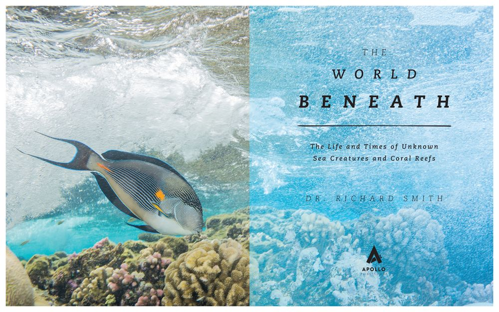 New Book The World Beneath Chronicles Adventures in Marine