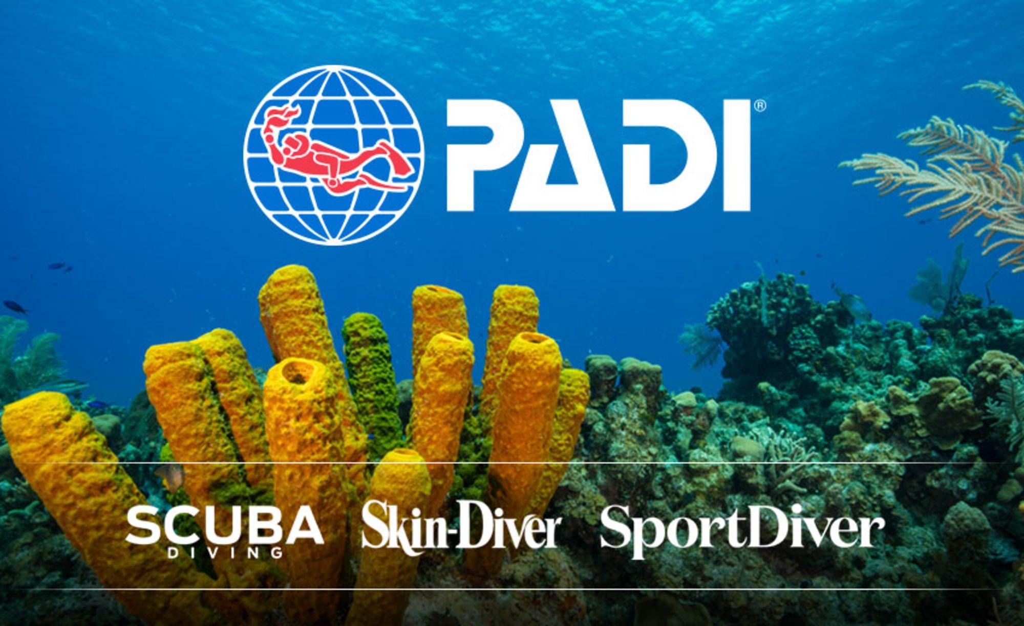 PADI Sets to Energize Dive Community through Integration of Bonnier Corporation's Dive Media Group