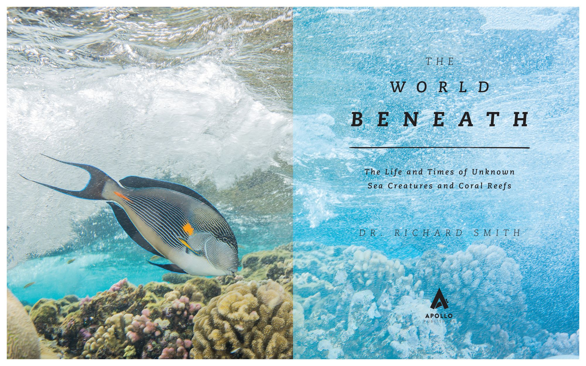 """New Book """"The World Beneath"""" Shines Light on Lesser-Known Sea Creatures"""