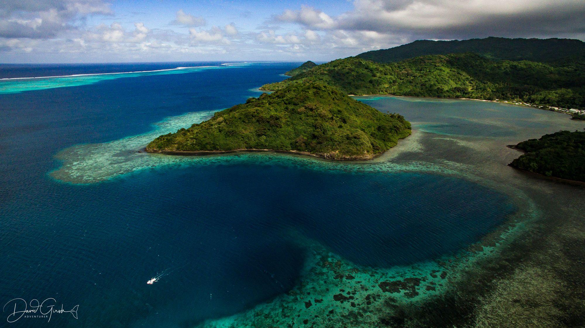 Conservation Spotlight: Pacific Blue Foundation's Beqa Lagoon Initiative