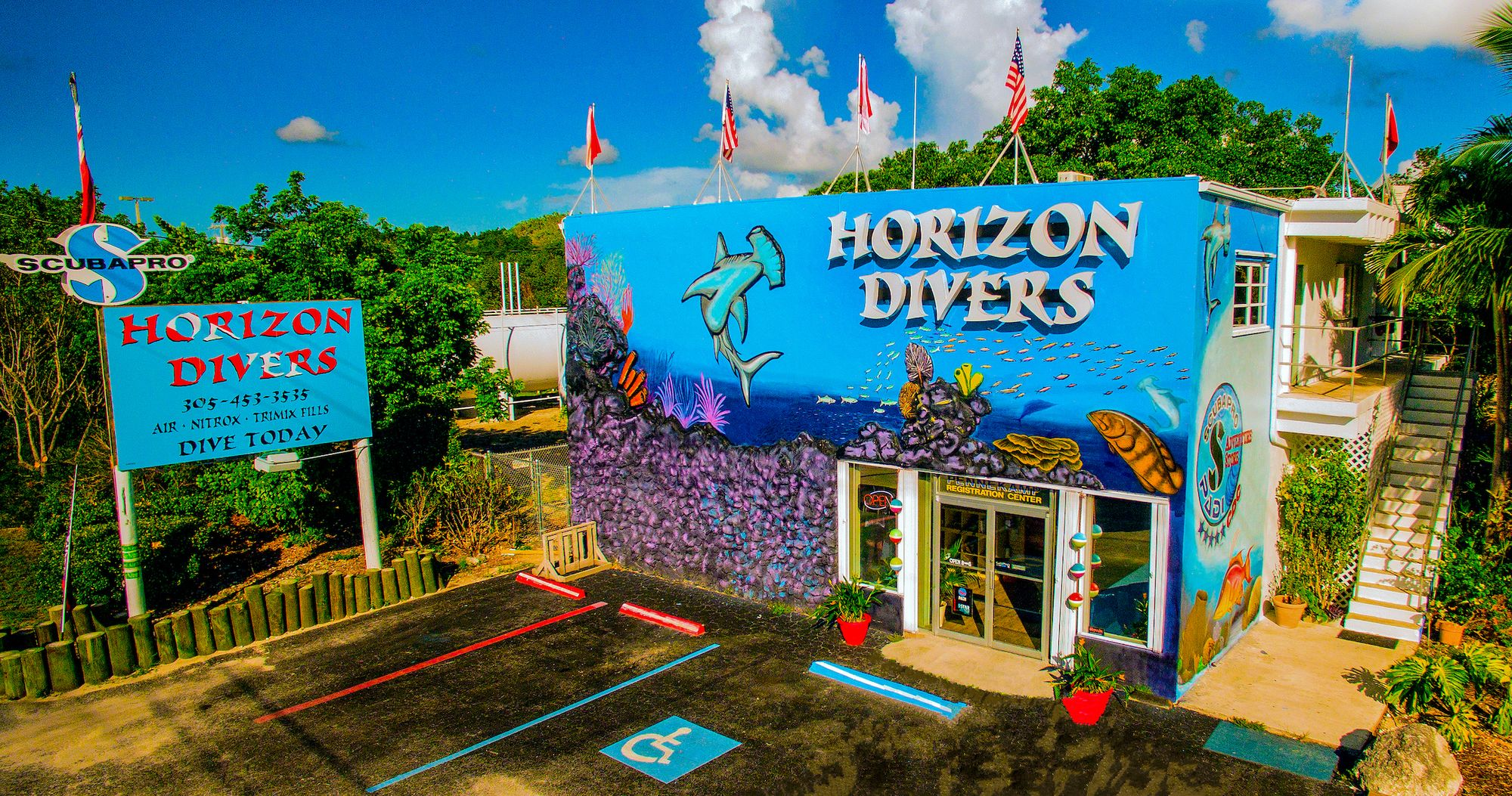 Fall and Winter Diving Special!