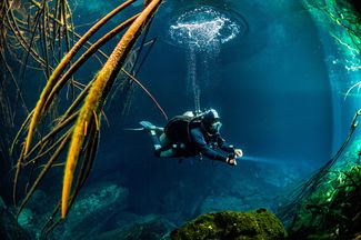 How To Perform the Ultimate Buoyancy Check