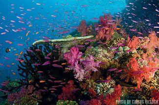 Somosomo Strait — Fiji