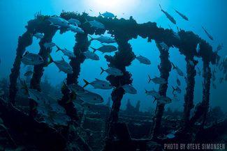 RMS Rhone — British Virgin Islands