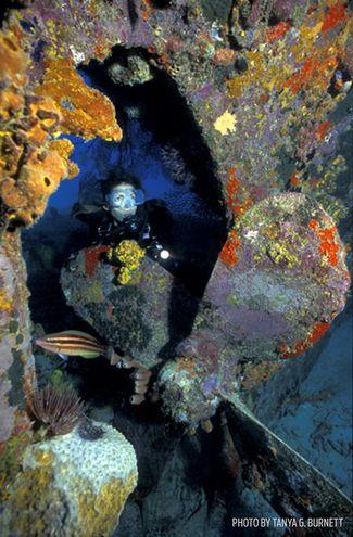 SS Stavronikita - Barbados