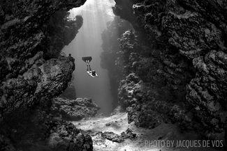 freediving egypt Ras Mohammed National Park