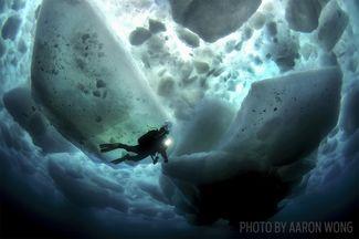 scuba diving ice diving