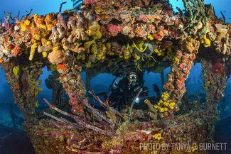 florida keys wreck scuba diving
