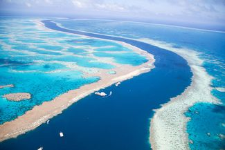 Climate Change: A Deadly Threat to Australia's Great Barrier Reef