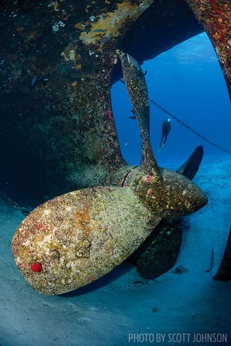 A Liveaboard Journey through the Cayman Islands
