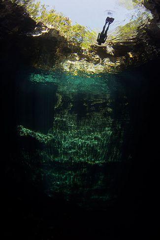 freediving Bahamas