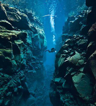 9 World's Best Dives