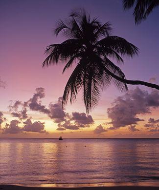 Romantic Tobago Resort