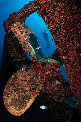 The Practical Guide to Wreck Diving