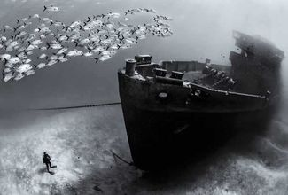 Underwater Photography: 3 Tips for Perfect Wreck Photos