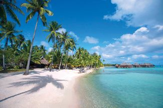 scuba diving french polynesia