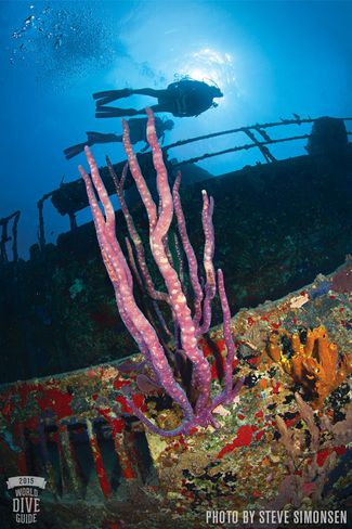 Butler Bay Wrecks - St. Croix