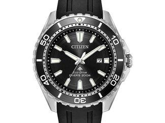 Promaster Diver 200m (BN0190-07E)