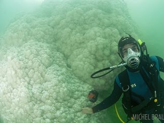 Diving the Dead Sea
