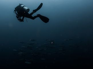 tips for lost diver