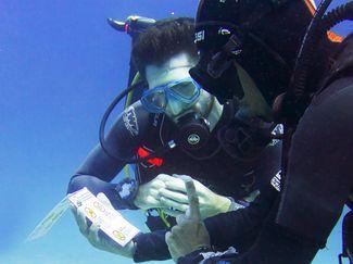 Green Fins divers