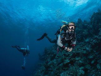 Expert buoyancy control