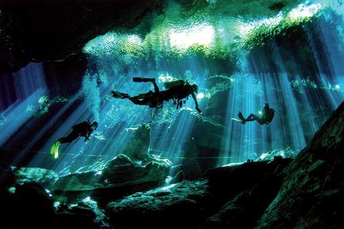 Hasil gambar untuk Riviera Maya scuba diving