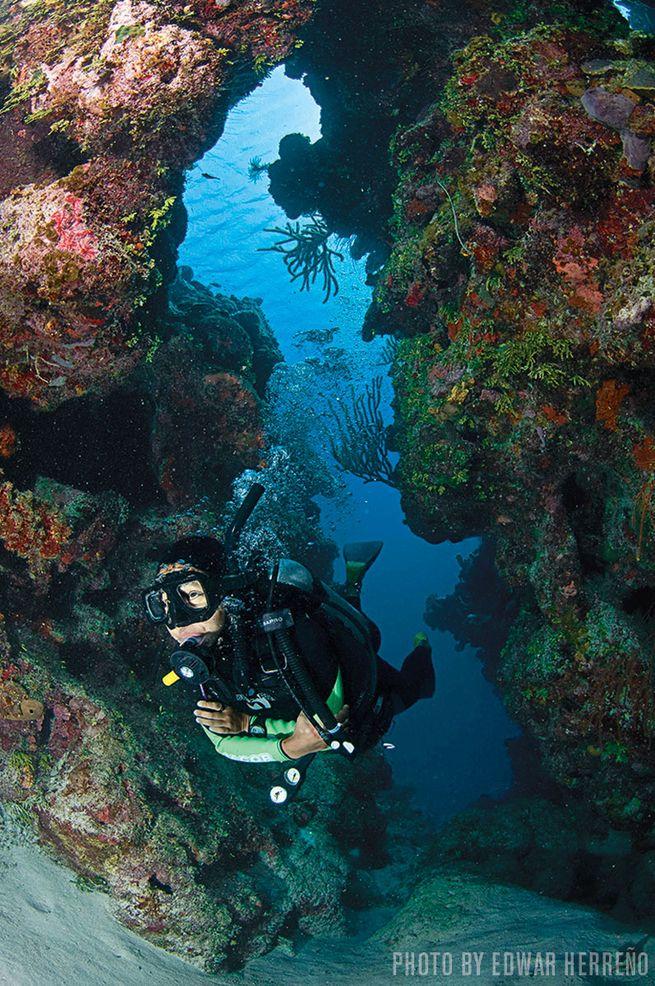 Mary's Place — Roatan, Bay Islands, Honduras