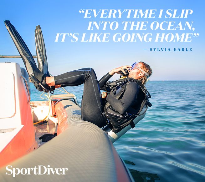 5 Inspiring Quotes Scuba Divers Will Love