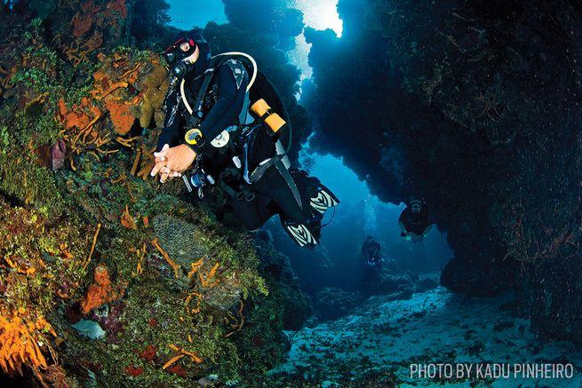 Reader Rankings: Top 10 Beginner Scuba Diving Sites ...