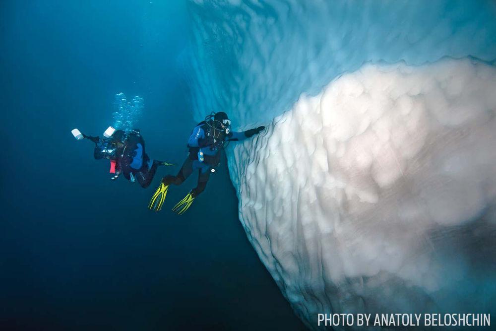 Scuba diving in antarctica ice
