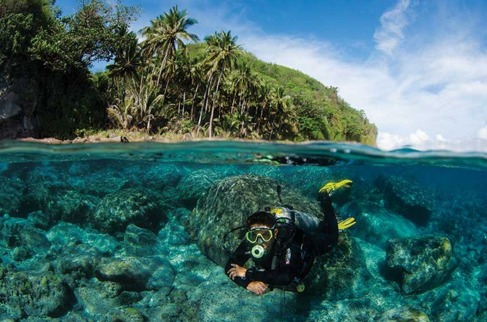 the vibrant visayas scuba diving in the philippines sport diver
