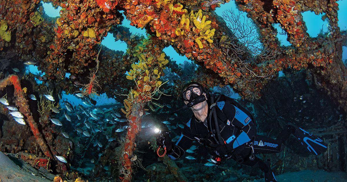 Scuba Diving Wrecks In Palm Beach, Florida
