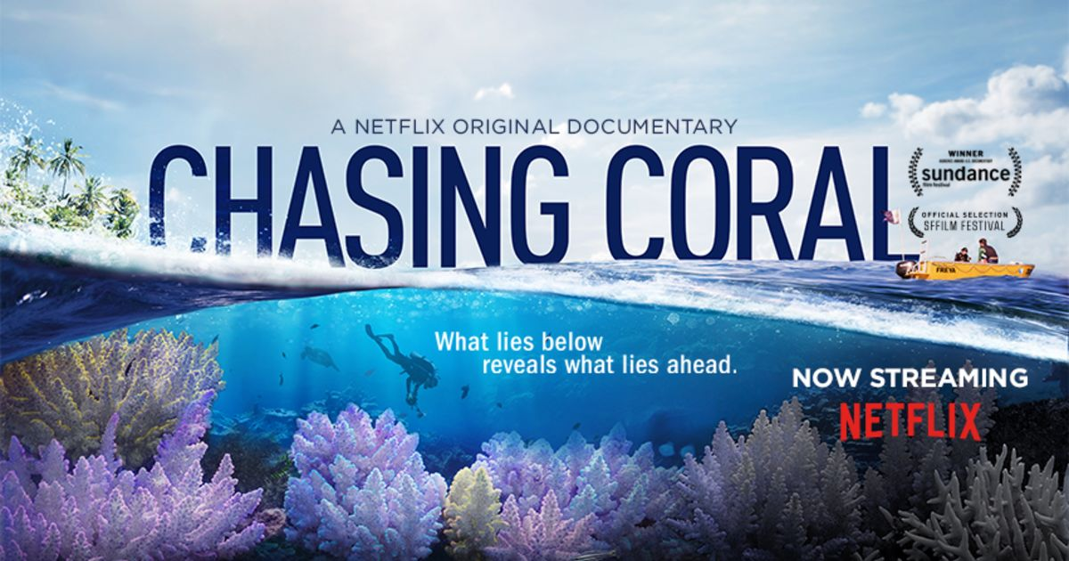 Best Nature Documentaries Ever Made