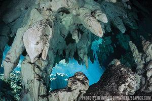 Gran Cenote — Riviera Maya, Mexico