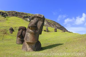 easter island carvings