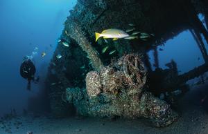scuba diving waikiki wrecks