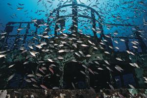 scuba diving north carolina wrecks