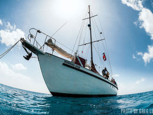 Scuba diving liveaboard trip Blackbeard Cruises Morning Star