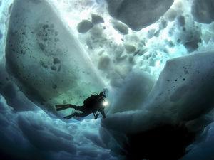 scuba diving challenge skills