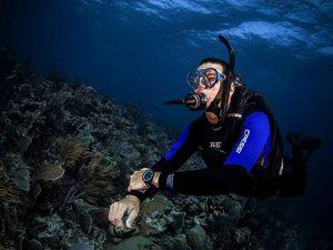scuba diving warm water gear