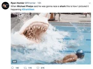 Michael Phelps vs Great White Shark