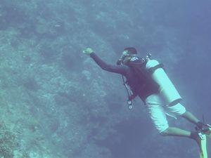 pompion wall scuba diving